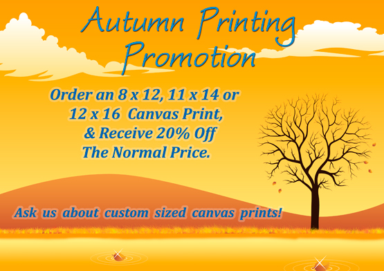 Autumn Canvas Print Promotion