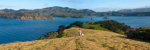 Photo-panorama-print-urupukapuka-island