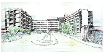 Whangarei-Hospital-Photo_Print_03