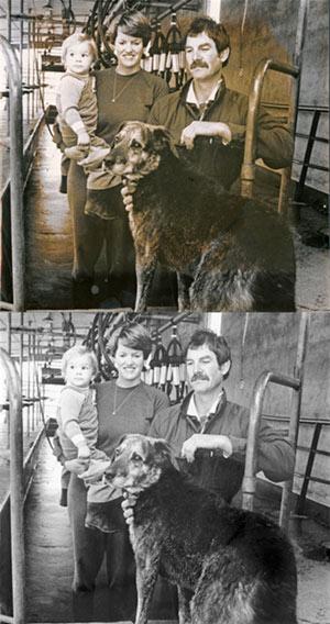 photo-restoration-remove-stain-in-photo